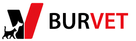 Burvet Veteriner Bursa